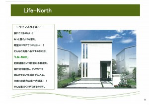 Life Concept House-11-01